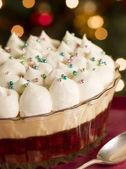 Christmas Spiced Sherry Trifle — Stock Photo