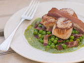 Pan Fried Scallops with Peas and Bacon — Stock Photo