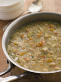 Farmhouse Chicken and Vegetable Soup — Stock Photo