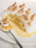 Individual Baked Alaska — Stock Photo