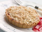 Rhubarb Crumble Tart — Stock Photo