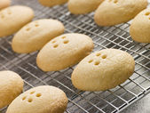 Wellington Button Biscuits on a Cooling Rack — Photo