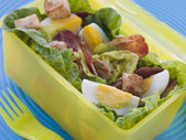Bacon and Egg Salad Lunch Box — Stock Photo