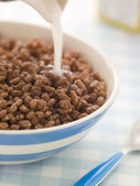 Chocolate coated Puffed Rice Cereal — Stock Photo