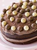 Chocolate Malteser Cake — Stock Photo