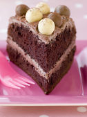 Slice of Chocolate Malteser Cake — Stock Photo