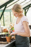 Woman in greenhouse raking soil in pot smiling — Stock Photo