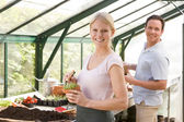 Couple in greenhouse raking soil in pots smiling — Stock Photo