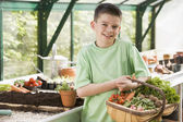 Young boy in greenhouse holding basket of vegetables smiling — Stockfoto