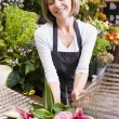 Woman working at flower shop smiling — Stock Photo #4770331