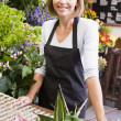 Woman working at flower shop smiling — Stock fotografie