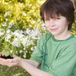 Stock Photo: Young boy outdoors holding plant smiling