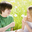 Two young children sitting outdoors holding dandelion heads smil - Stock Photo