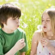 Two young children sitting outdoors blowing dandelion heads smil - Stock Photo