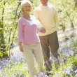 Couple walking outdoors holding hands smiling - Stock Photo