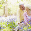 Couple sitting outdoors with flowers smiling — Stock Photo #4771047