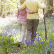 Couple walking outdoors with walking stick — Stock Photo