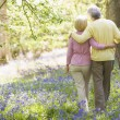 Stock Photo: Couple walking outdoors with walking stick