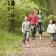 Family walking on path holding hands smiling — Stock Photo #4771102