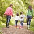 Family walking on path holding hands — Stock Photo