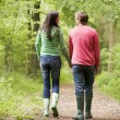 Stock Photo: Couple walking on path holding hands