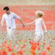 Couple walking in poppy field holding hands smiling - Stock Photo