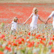 Family walking in poppy field holding hands smiling — Stock Photo