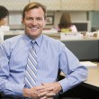 Businessman in cubicle smiling — Stock Photo #4771968