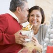 Middle Aged Couple Affectionately Sitting And Holding Christmas - Stock Photo