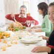 Family All Together At Christmas Dinner — Stock Photo #4778356