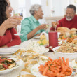 Family All Together At Christmas Dinner — Stock Photo #4778411