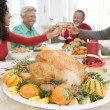 Family All Together At Christmas Dinner — Stock Photo #4778414