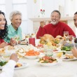 Family All Together At Christmas Dinner - Foto Stock