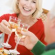 Couple Toasting At Christmas Dinner — Stock Photo