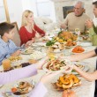 Family All Together At Christmas Dinner — Stock Photo #4778485
