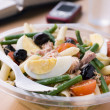 Stock Photo: TunPastNicoise Salad