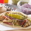 Marinated Chicken Kebab In PittBread With Salad And Pickle — Stock Photo #4778660