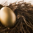 Golden Nest Egg - Stock Photo