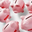 Accumulation Of Piggy Banks — Stock Photo