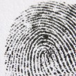 Close-Up Of Finger Print — Stock Photo