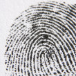 Close-Up Of Finger Print - Stock Photo