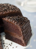 Slice Of Chocolate Fudge Cake — Stock Photo