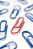 Studio Shot Of One Red Paperclip Amid Blue Paperclips — Stock Photo