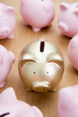 Golden Piggy Bank Among Many Pink Ones — Stock Photo
