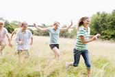 Vijf jonge vrienden uitgevoerd in een veld glimlachen — Stockfoto