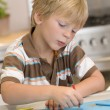 Young Boy Drawing Pictures — Stock Photo #4780444