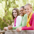 Stock Photo: Teenage Girls Leaning On Wooden Railing