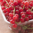 Stock Photo: Redcurrants In Packaging
