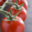 Stock Photo: Vine Tomatoes
