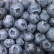 Stock Photo: Fresh Blueberries